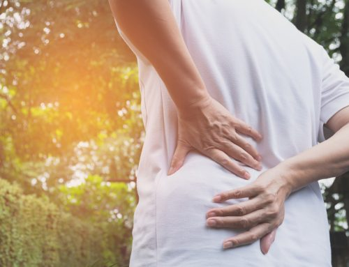 Beat Lower Back Pain with the Best Chiropractic Clinic