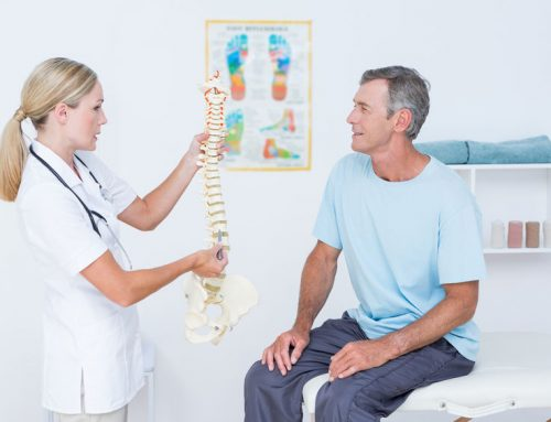 Back Pain Chiropractor for You in St. Petersburg