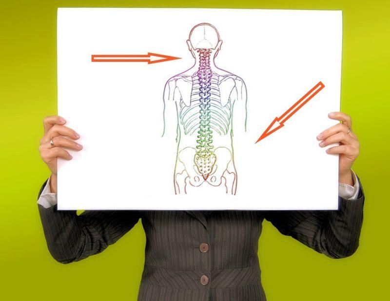 Chiropractic Exam | Downtown St. Petersburg | Reza Chiropractic