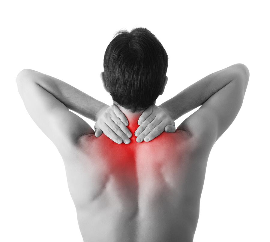 Chiropractor | St. Petersburg | Reza Chiropractic Clinic